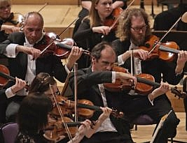 Hallé, Royal Concert Hall, Nottingham, 5*****: by William Ruff